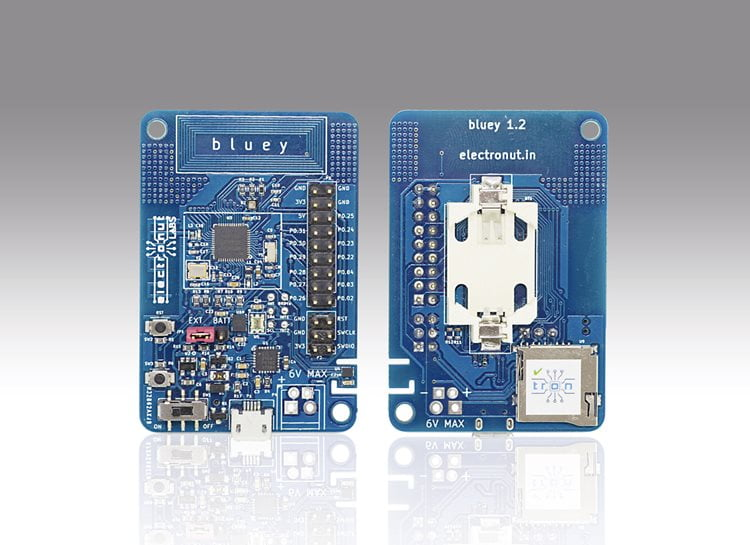 Bluey, development board